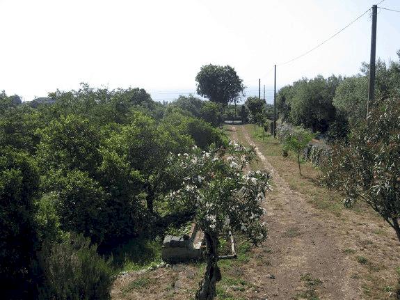 Sicily villa driveway