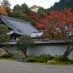 Experience the Autumnal Beauty of Japan