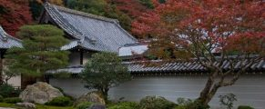 Japanese Garden fall