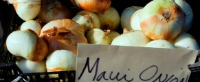 Huge Maui Onions