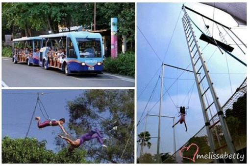Flying Trapeze at Sentosa