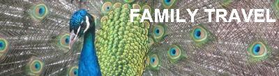 Theme - Family Travel