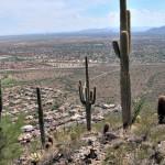 Arizona Bound: Speaking at PhoCus Wright