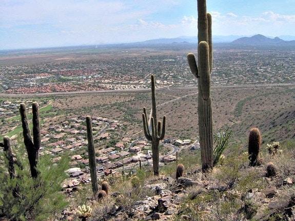 Phocus Wright in Scottsdale Arizona