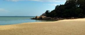 The beach in front of Rasa Sayang Resort