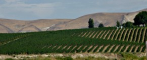 Agriculture is big business in the Yakima Valley