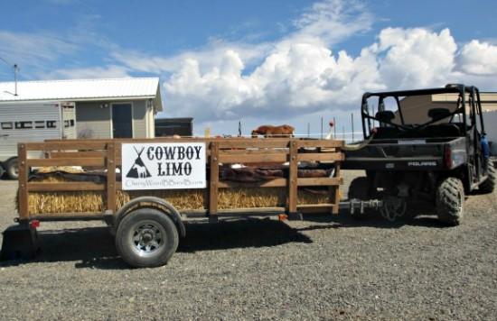 cowboy limo at cherrywood