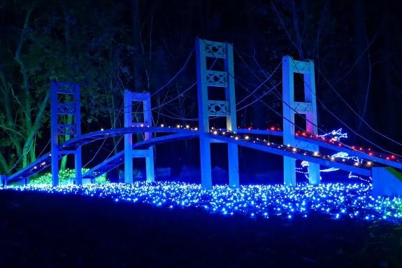 narrows bridge at zoolights