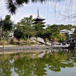 Getaway to Nara, Japan