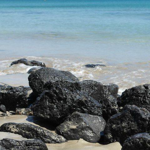 rocky beach in fuerteventura spain