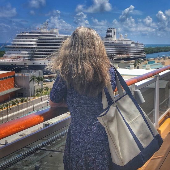travelsmith tote bag while touring cruise ship