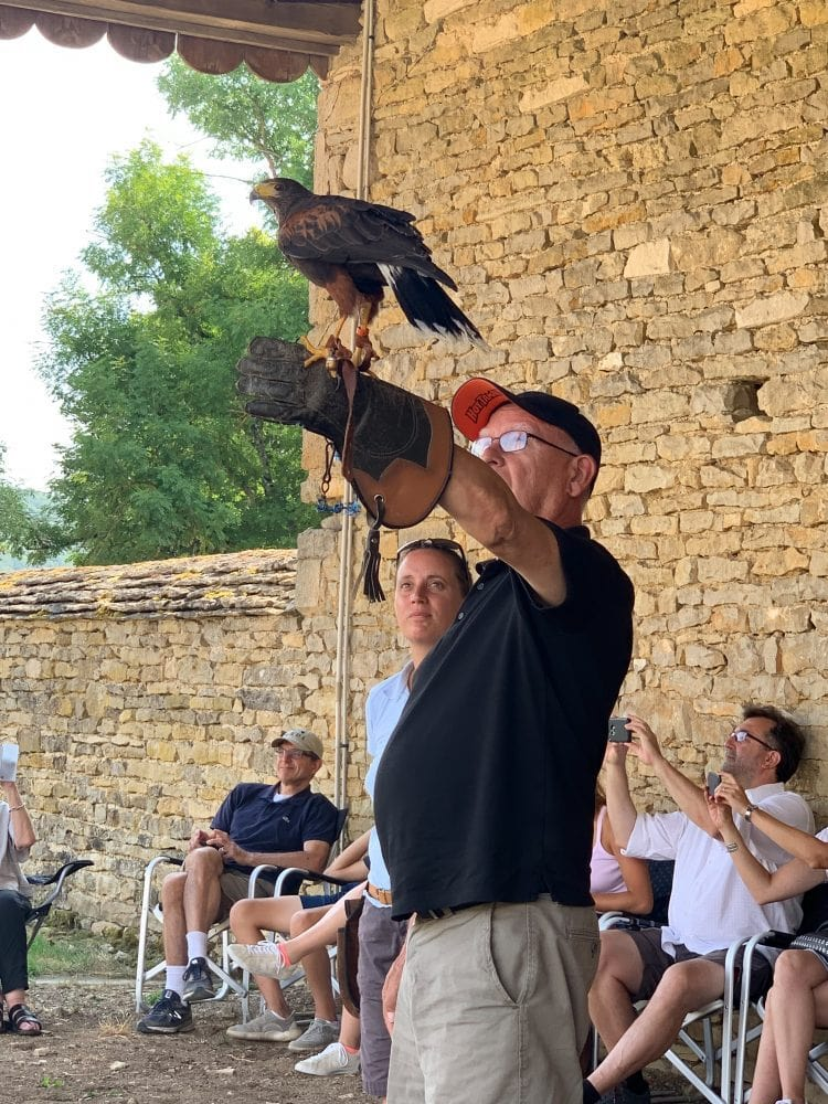 Falconry at Chateau de Commarin