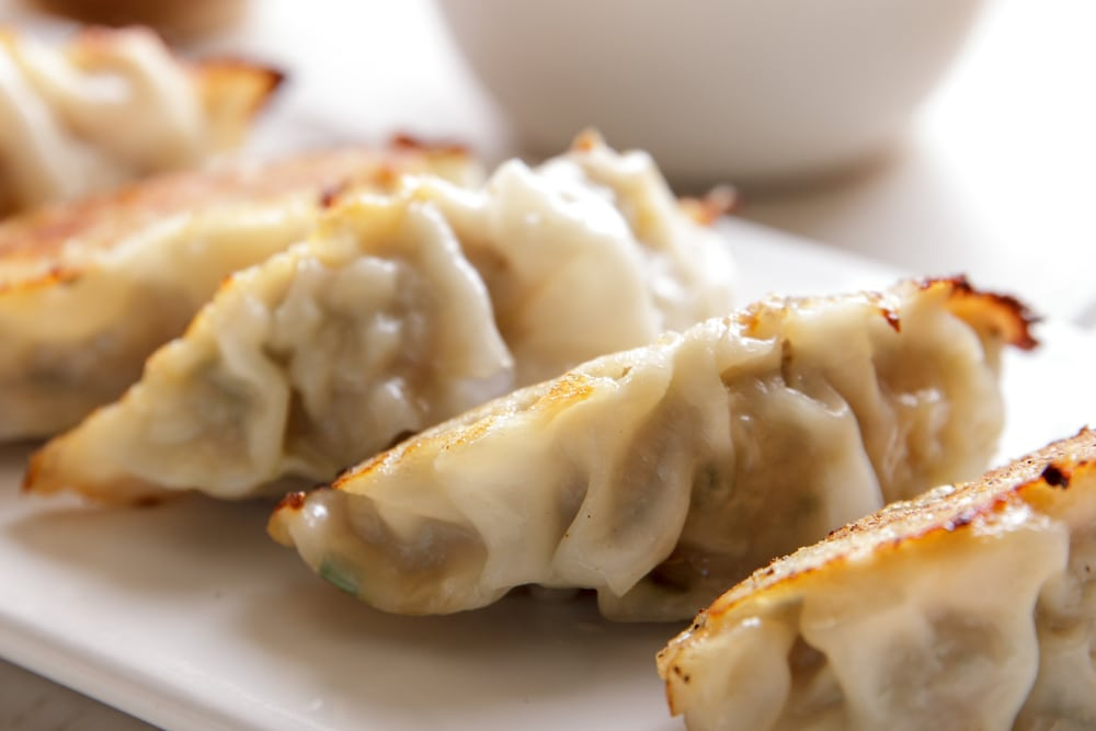 close up portrait of japanese food gyoza dumplings
